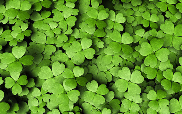 What Do Four-leaf Clovers Mean to You?